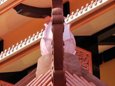 Chuyên Đề Mừng Lễ Phật Thành Đạo Và Sinh Nhật Sư Phụ – Qua Những Góc Nhìn